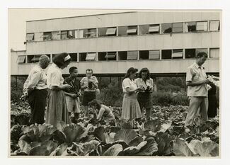 Leap Before You Look: Black Mountain College, 1933-1957, installation view