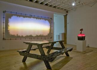 Indian Summer: James Davis, installation view