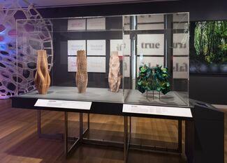 Beauty - Cooper Hewitt Design Triennial, installation view