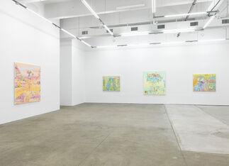 Dennis Congdon - Congeries, installation view