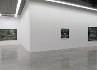 Coming Home, installation view