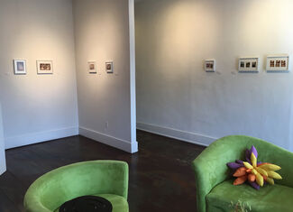 Prized Possession, installation view