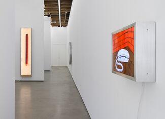 T. Kelly Mason, installation view
