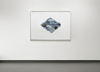 Landscape as a Brain, installation view