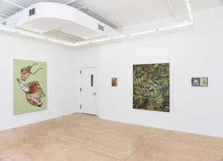 Stephanie Hier: Part and Parcel, installation view