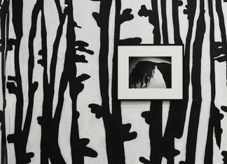 In the Pines – Slight Return, installation view