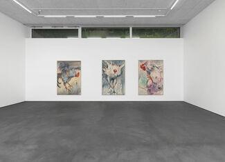 Andrej Dubravski - BIRDS AND WIND, installation view