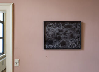 A Whole Variety, installation view