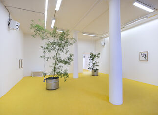 Brutal Family Roots, installation view