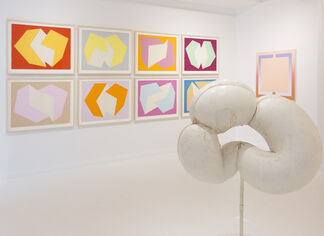 Different Shapes, installation view