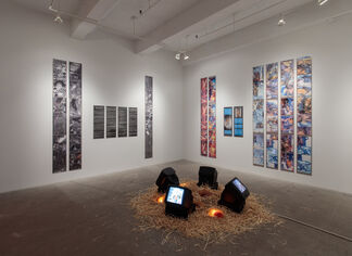 Further Evidence - Exhibit A, installation view