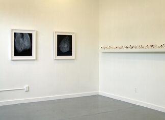 Bunny Burson: Consequences, installation view