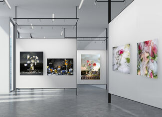 The Frame Eternal, installation view