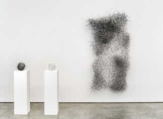 Abstractions of Nature, installation view