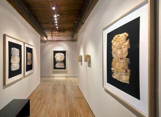 Ann Hamilton: near · away, installation view