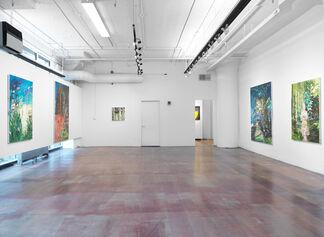 Runaways, installation view