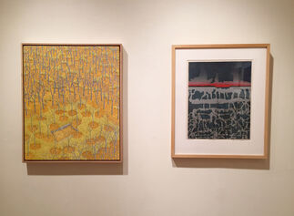 In Through the Outdoors: Kass, Bray, Shinohara, installation view