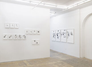 The Homeling, installation view