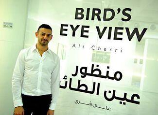 Bird's Eye View - Ali Cherri, installation view