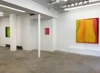 Charles Dunn : depression, installation view