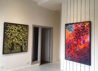 Hen Coleman: YONDER, installation view
