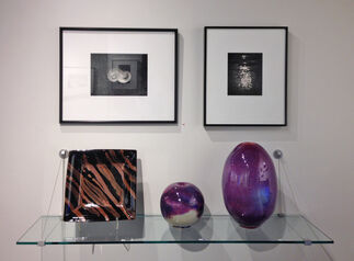 Dark into Light: Photographs by Paul Caponigro, installation view