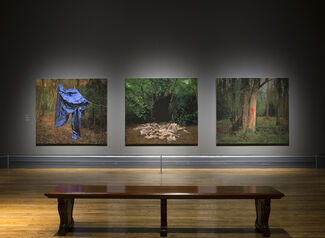 George Shaw: My Back to Nature, installation view