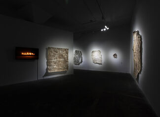 Project of Ruin:Barbarous Regeneration, installation view