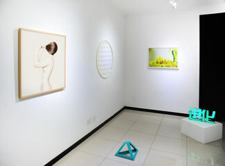 The Yellow Ones are Mine, installation view