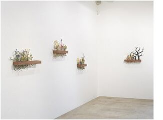 Andy Ouchi, installation view