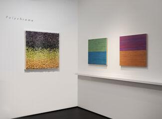 Polychrome, installation view