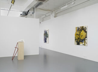 Elizabeth Neel: The People, the Park, the Ornament, installation view
