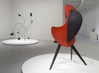 Marvelous Objects: Surrealist Sculpture from Paris to New York, installation view
