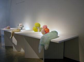 LAURA KRAMER | Poisonous Minerals, installation view