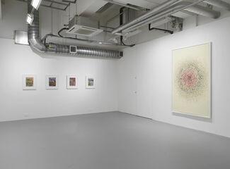 Shahzia Sikander: Parallax, installation view