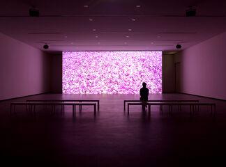 Installment 1: Inaugural Exhibition, installation view