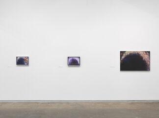 Dan Colen: Oil Painting, installation view
