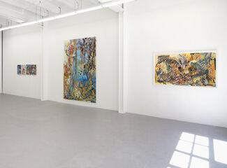 Iva Gueorguieva, installation view