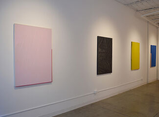Transparency/Reflection, installation view