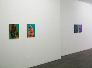 Gerald Collings - Electric Bogeyman, installation view