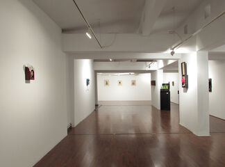 Boxes, Drawers and a Gibbon, installation view