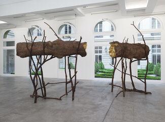 Giuseppe Penone: Le Corps d'un jardin, installation view