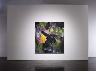 Ed Moses: Through The Looking Glass, installation view