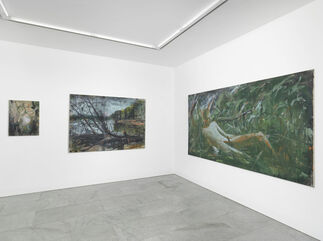 Andrej Dubravsky - DO YOU WANT TO LIVE LIKE ME?, installation view