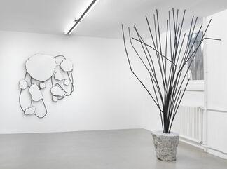 Monika Sosnowska, installation view