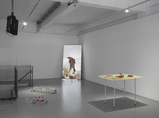 Phantom Limbs: Alisa Baremboym, Antoine Catala, Ian Cheng, Cécile B. Evans, Ken Okiishi, Philippe Parreno, Charlotte Prodger, Rachel Rose, installation view