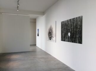 Fused with Nature, installation view