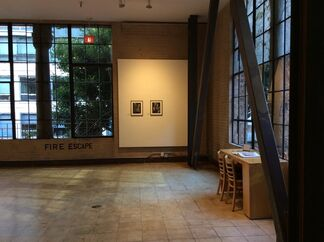 Marcel Dzama: The Fallen Fables, installation view