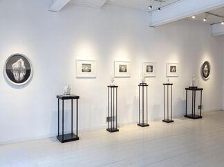 Peculiar Rarities, installation view