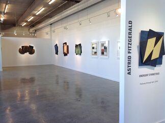 Astrid Fitzgerald, installation view